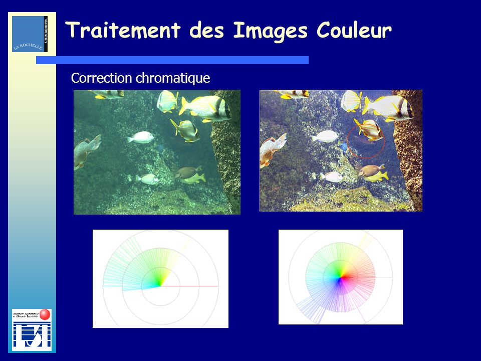 Laboratoire dInformatique et dImagerie Industrielle Traitement des Images Couleur Correction chromatique