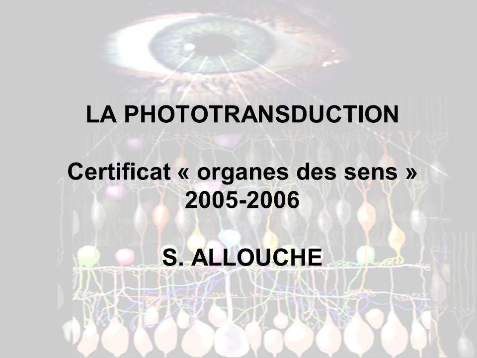 LA PHOTOTRANSDUCTION Certificat « organes des sens » 2005-2006 S. ALLOUCHE