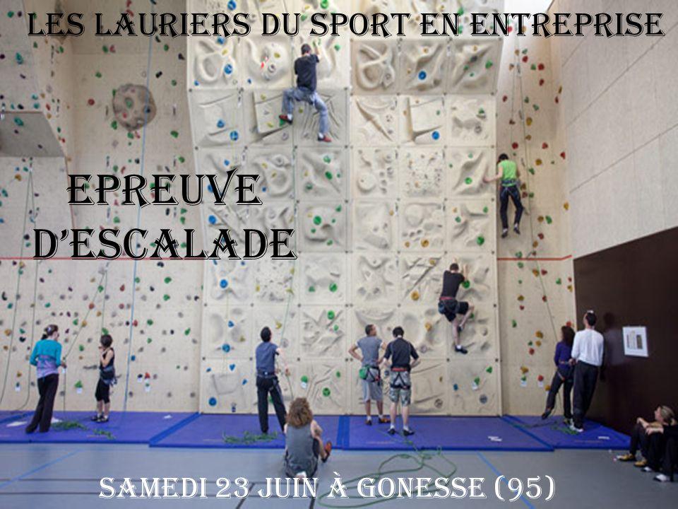 Les Lauriers du Sport en Entreprise Epreuve dESCALADE Samedi 23 juin à Gonesse (95)