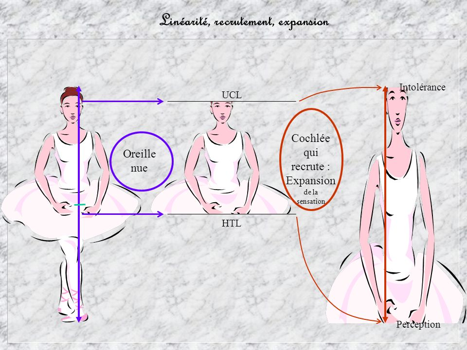 Linéarité, recrutement, expansion Perception Intolérance Oreille nue HTL UCL Cochlée qui recrute : Expansion de la sensation