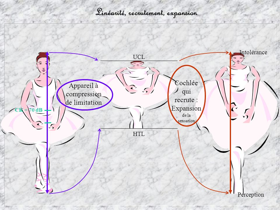 Linéarité, recrutement, expansion Perception Intolérance Cochlée qui recrute : Expansion de la sensation HTL UCL Appareil à compression de limitation