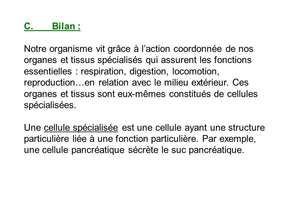 C.Bilan : Notre organisme vit grâce à laction coordonnée de nos organes et tissus spécialisés qui assurent les fonctions essentielles : respiration, d