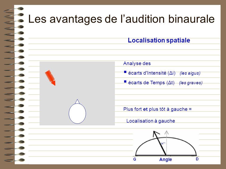 Localisation spatiale Analyse des écarts d'Intensité (Δi) (les aigus) écarts de Temps (Δt) (les graves) Plus fort et plus tôt à gauche = Angle G D Loc