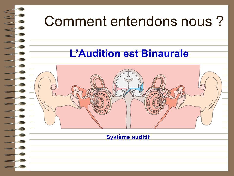 Comment entendons nous ? Système auditif LAudition est Binaurale