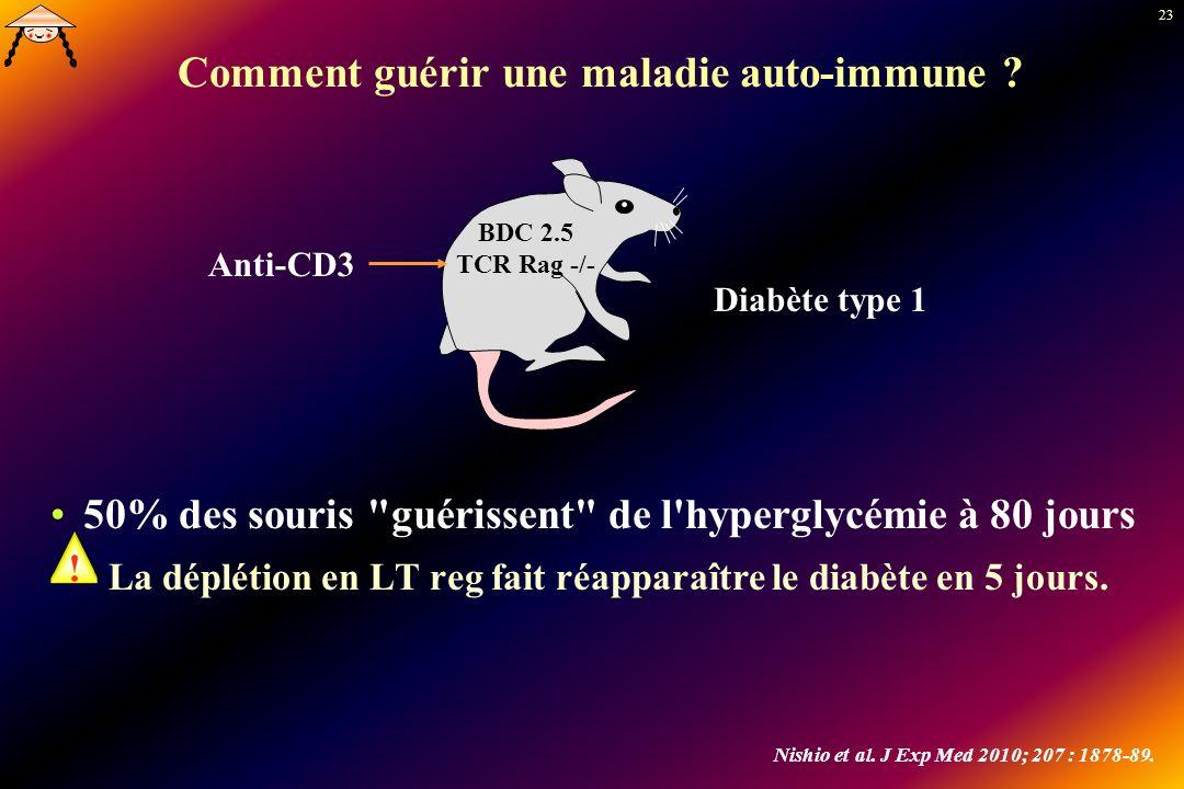 23 Comment guérir une maladie auto-immune ? 50% des souris