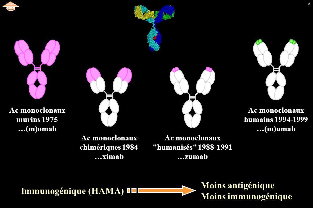 6 Ac monoclonaux murins 1975 …(m)omab Ac monoclonaux chimériques 1984 …ximab Ac monoclonaux
