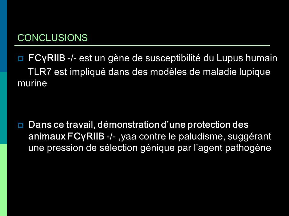 CONCLUSIONS FCγRIIB -/- est un gène de susceptibilité du Lupus humain TLR7 est impliqué dans des modèles de maladie lupique murine Dans ce travail, dé