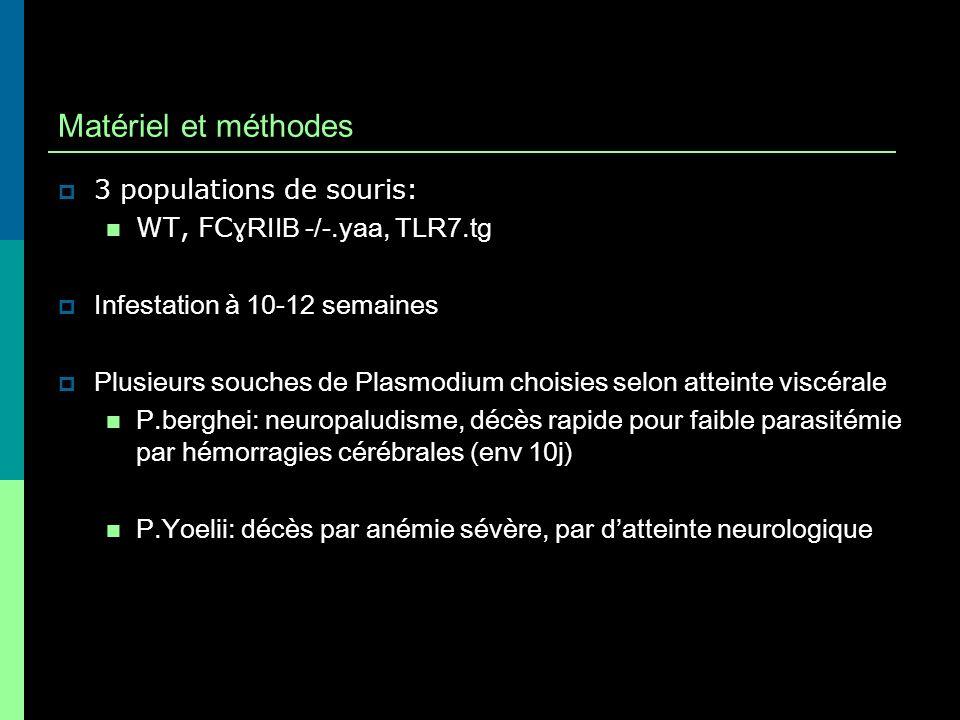 Paramètres étudiés: Survie (j) Parasitémie (%) Poids rate, reins, cerveau (g) Lésions histologiques hémorragies cérébrales (score 0-3 sur 4 coupes) Infiltrat leucocytaire cérébral glomérulonéphrite lupique, … Sang collecté à j0, j3, j5 après infestation :frottis goutte épaisse, conservation -80° pour dosage cytokines (IL-1-6, IL-10, IL-12p70, IL- 17, MIP-1 α, MCP1, RANTES, GM-CSF, IFN- ɣ, TNFα)