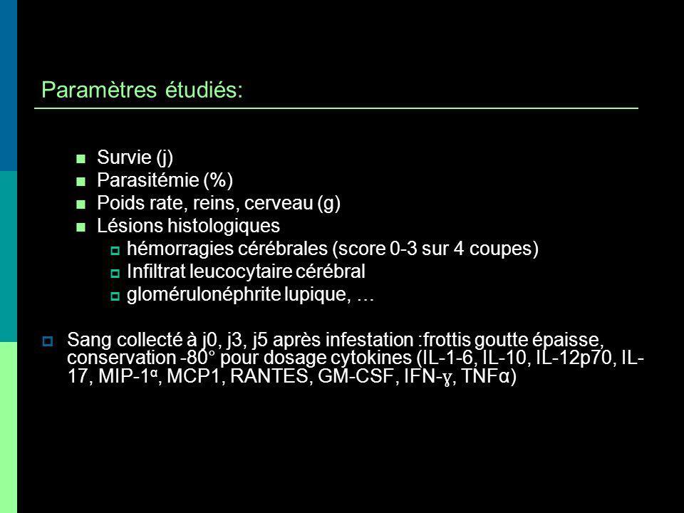 Paramètres étudiés: Survie (j) Parasitémie (%) Poids rate, reins, cerveau (g) Lésions histologiques hémorragies cérébrales (score 0-3 sur 4 coupes) In
