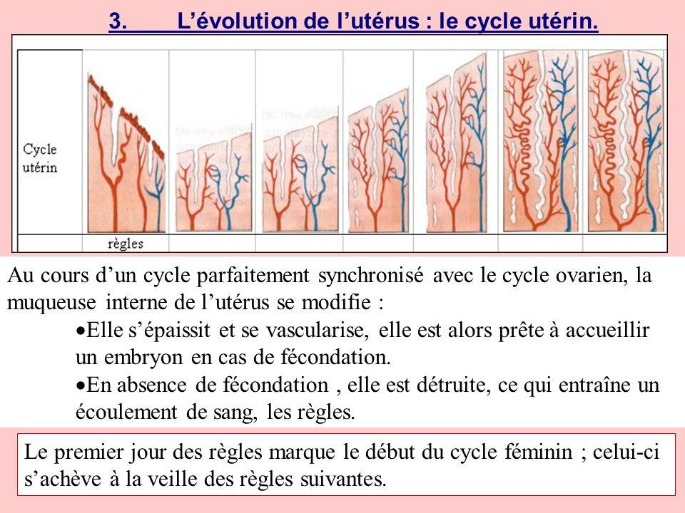 4.Autre cycle.