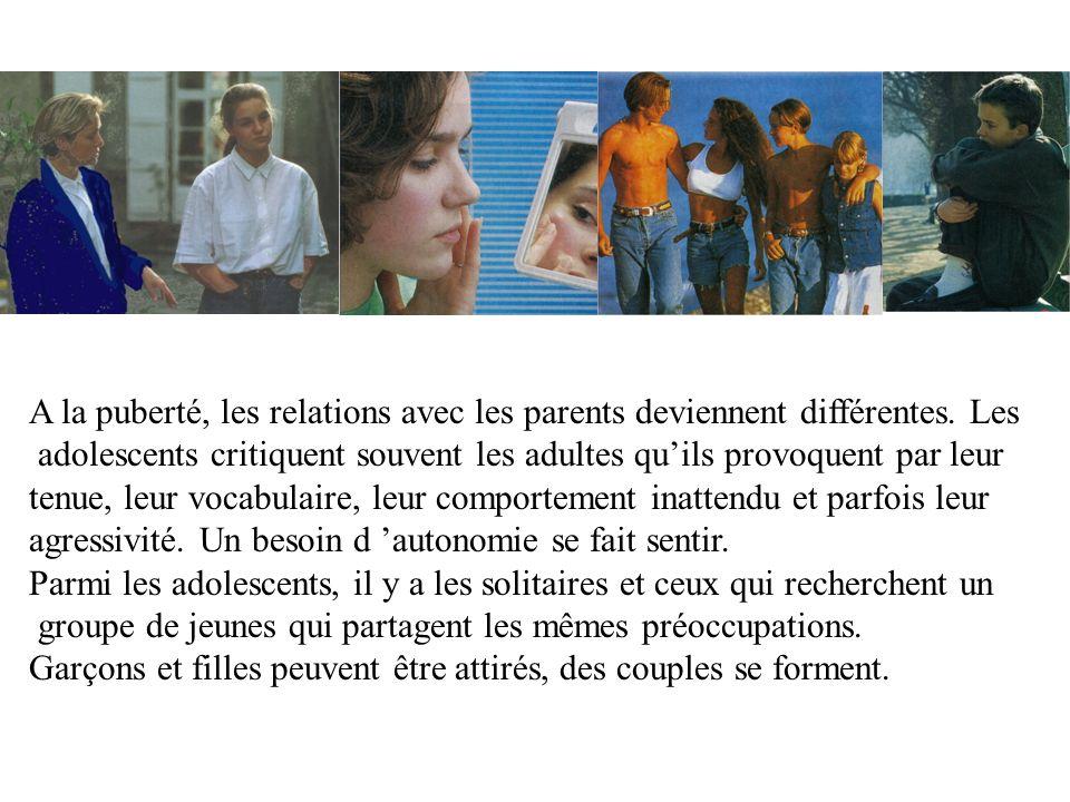 C.La puberté : un ensemble de transformations.1.Définition.