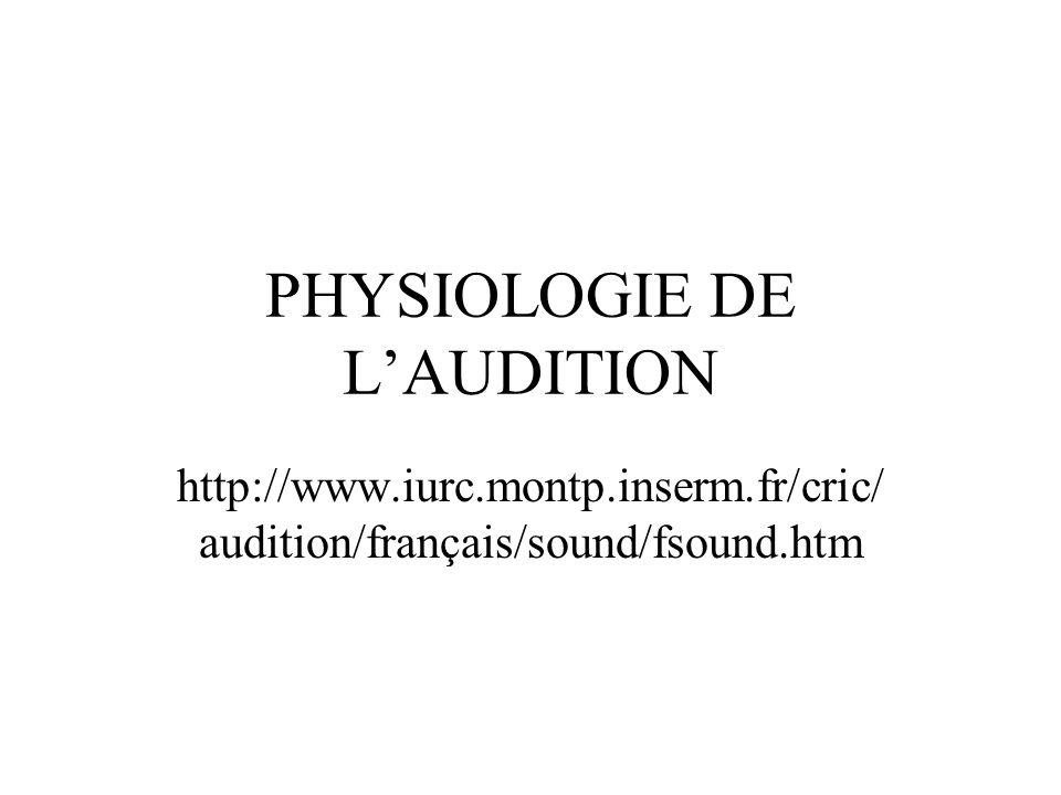 PHYSIOLOGIE DE LAUDITION http://www.iurc.montp.inserm.fr/cric/ audition/français/sound/fsound.htm