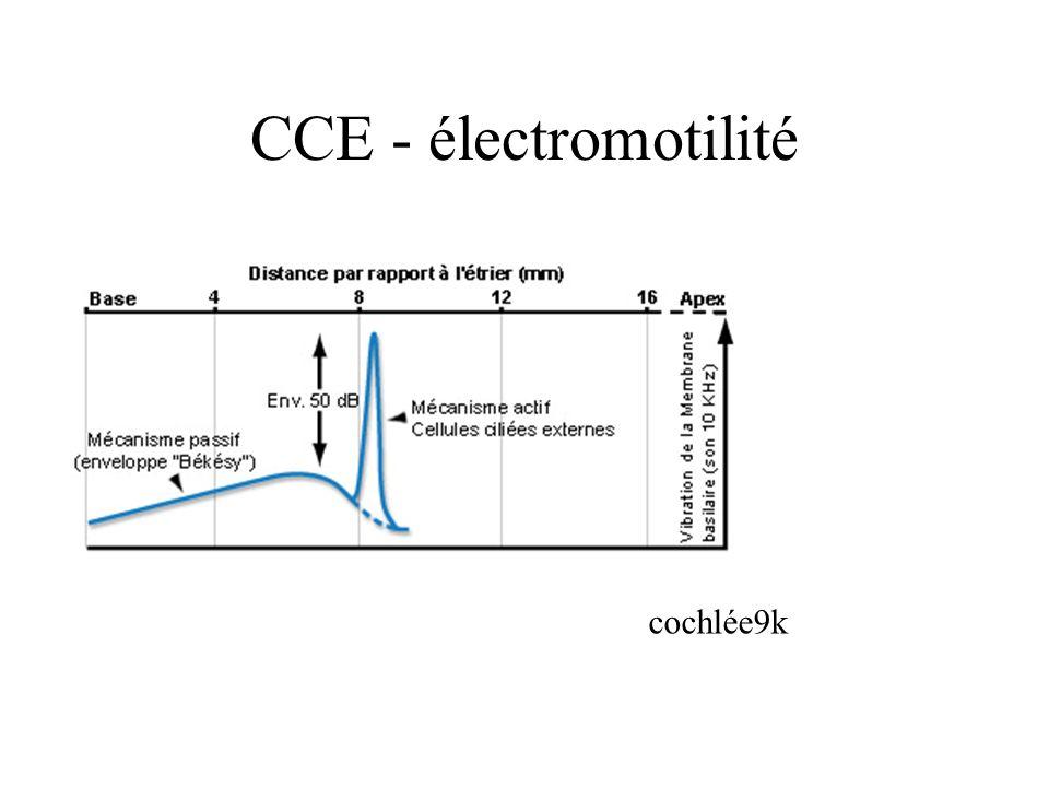 CCE - électromotilité cochlée9k