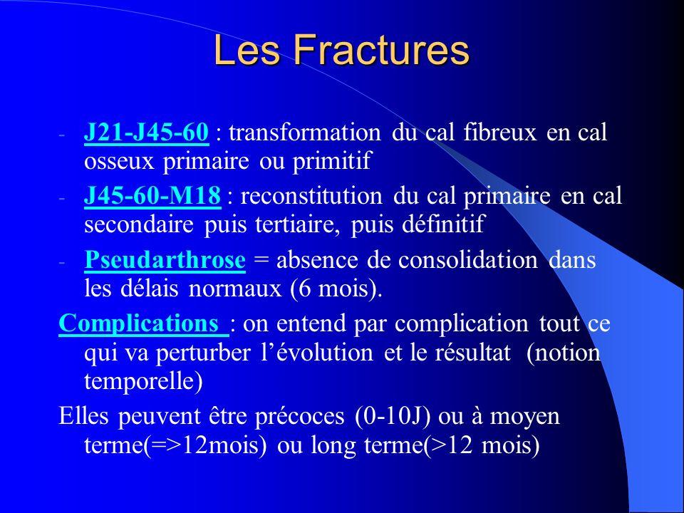 Les Fractures - J21-J45-60 : transformation du cal fibreux en cal osseux primaire ou primitif - J45-60-M18 : reconstitution du cal primaire en cal sec