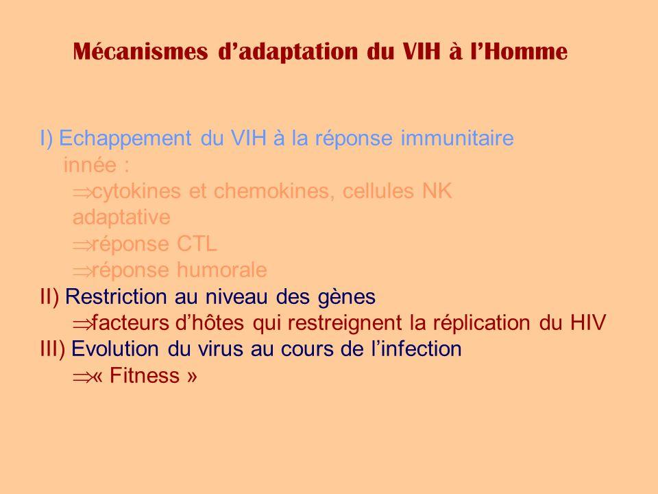 Mécanismes dadaptation du VIH à lHomme I) Echappement du VIH à la réponse immunitaire innée : cytokines et chemokines, cellules NK adaptative réponse