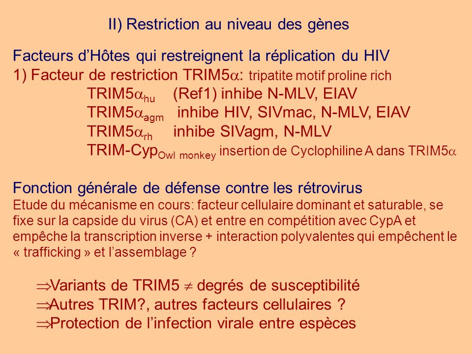 II) Restriction au niveau des gènes Facteurs dHôtes qui restreignent la réplication du HIV 1) Facteur de restriction TRIM5 : tripatite motif proline r