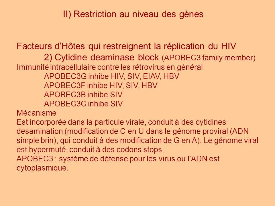 II) Restriction au niveau des gènes Facteurs dHôtes qui restreignent la réplication du HIV 2) Cytidine deaminase block (APOBEC3 family member) Immunit