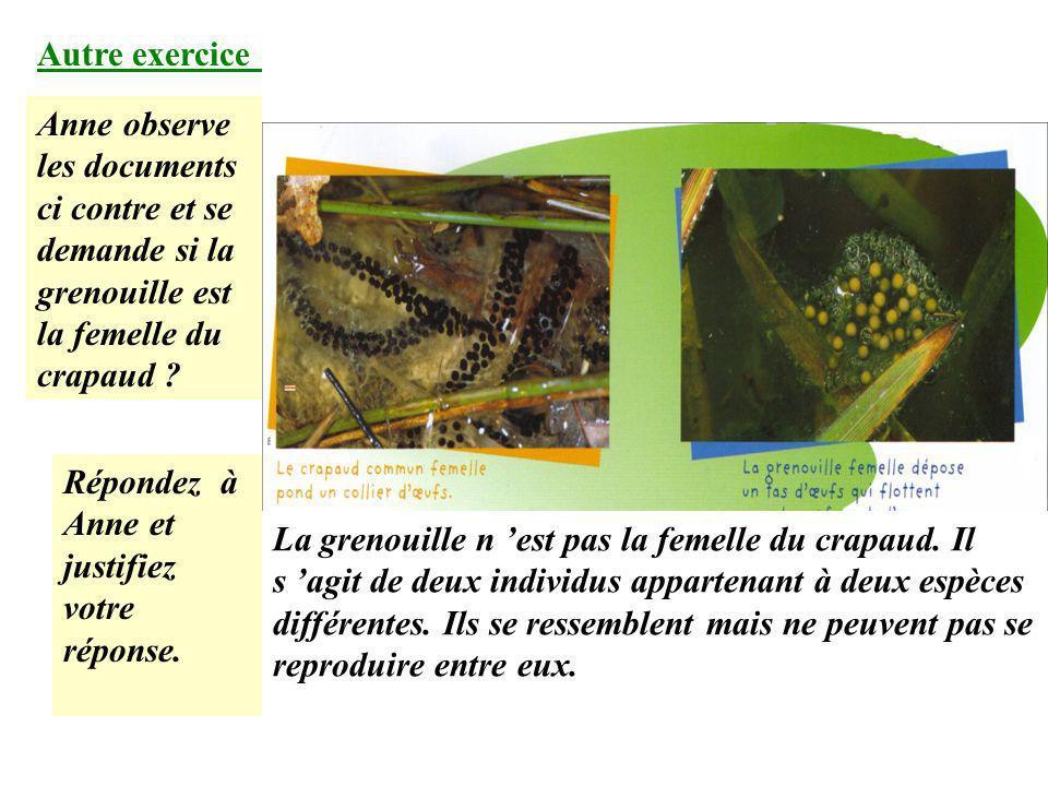 Autre exercice d entraînement. Anne se demande si la grenouille rousse et la grenouille verte appartiennent à la même espèce. 1. Que faudrait-il savoi