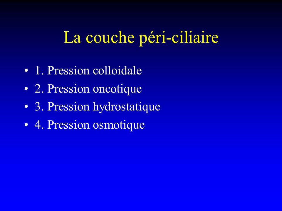 La couche péri-ciliaire 1. Pression colloidale 2. Pression oncotique 3. Pression hydrostatique 4. Pression osmotique