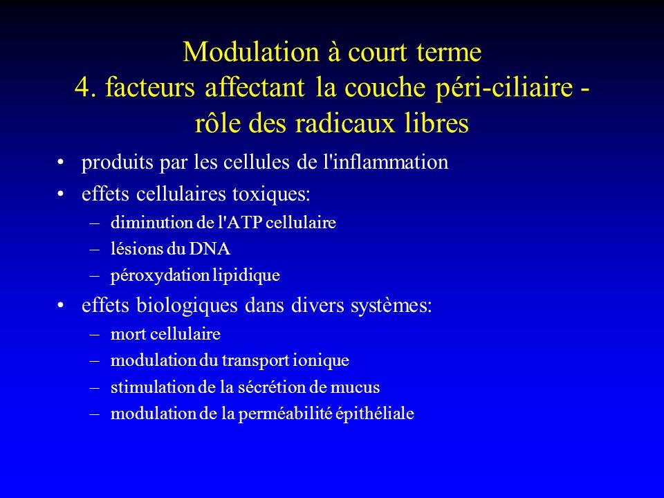 Modulation à court terme 4. facteurs affectant la couche péri-ciliaire - rôle des radicaux libres produits par les cellules de l'inflammation effets c