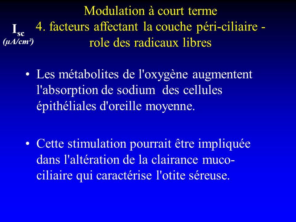 I sc (µA/cm²) Modulation à court terme 4. facteurs affectant la couche péri-ciliaire - role des radicaux libres Les métabolites de l'oxygène augmenten