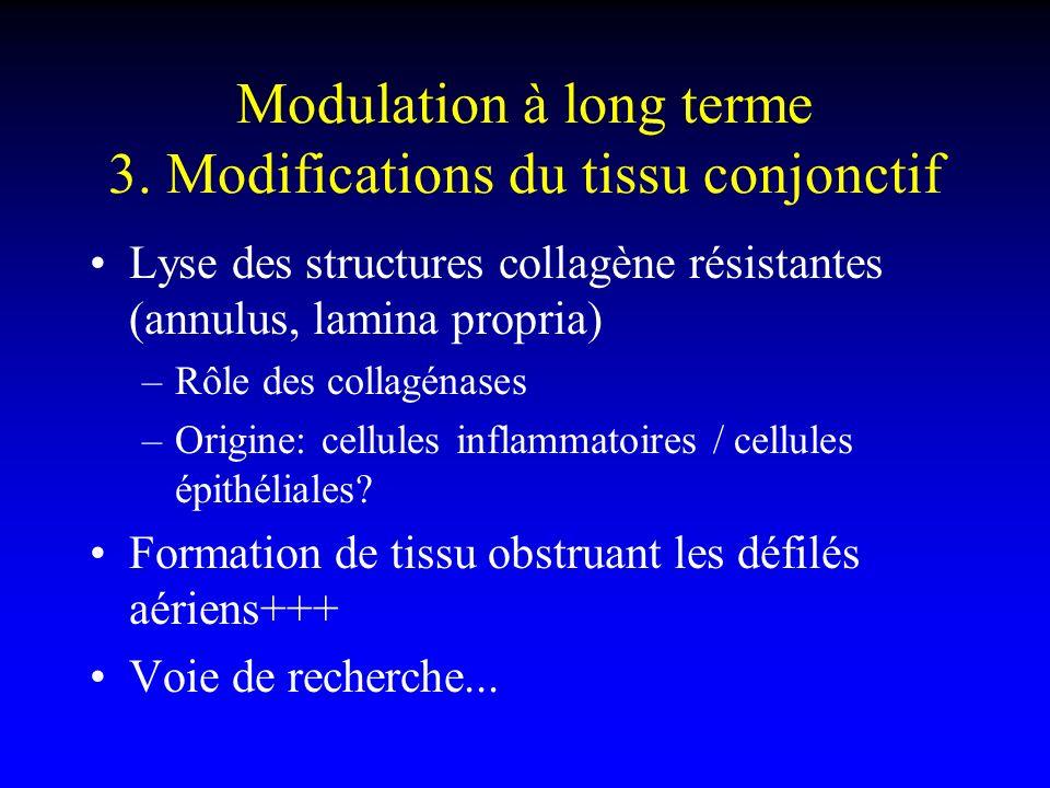 Modulation à long terme 3. Modifications du tissu conjonctif Lyse des structures collagène résistantes (annulus, lamina propria) –Rôle des collagénase