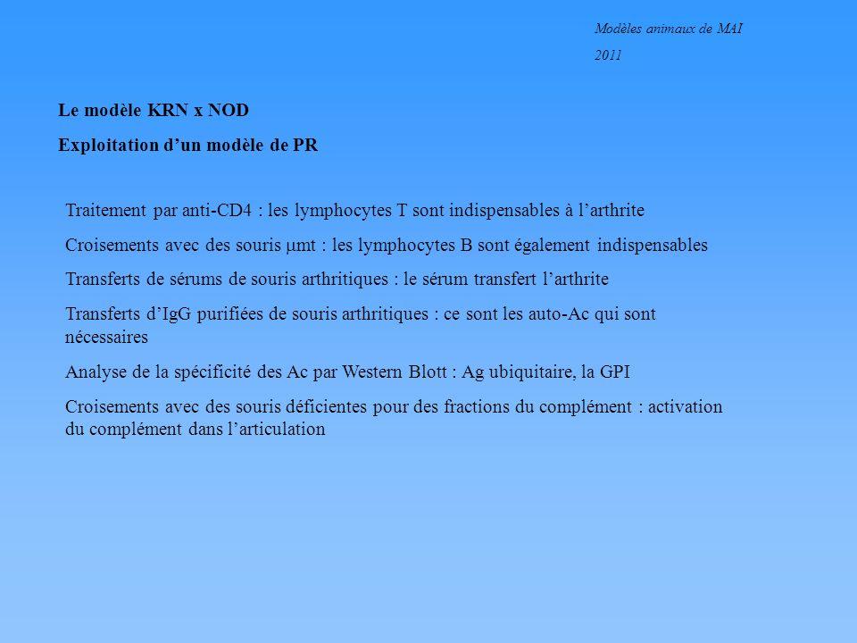 Modèles animaux de MAI 2011 Le modèle KRN x NOD Exploitation dun modèle de PR Traitement par anti-CD4 : les lymphocytes T sont indispensables à larthr