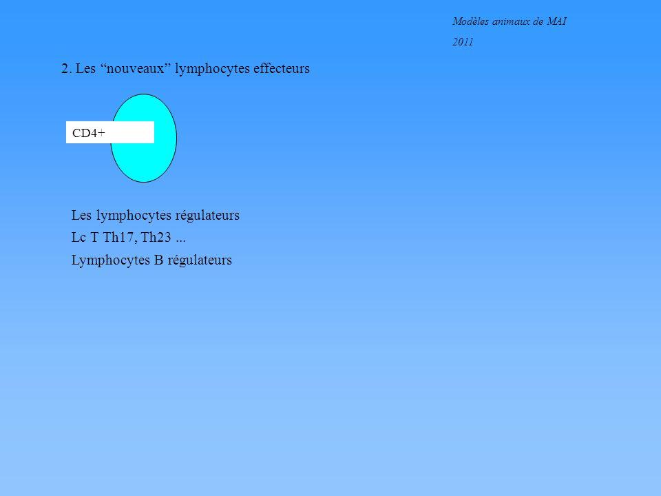 Modèles animaux de MAI 2011 2. Les nouveaux lymphocytes effecteurs CD4+ Les lymphocytes régulateurs Lc T Th17, Th23... Lymphocytes B régulateurs