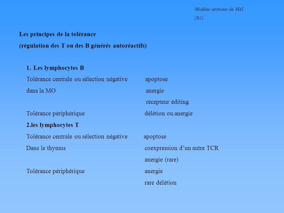 Modèles animaux de MAI 2011 Les principes de la tolérance (régulation des T ou des B générés autoréactifs) 1. Les lymphocytes B Tolérance centrale ou