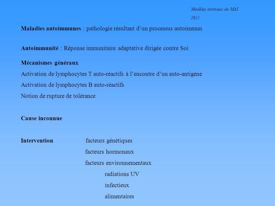 Modèles animaux de MAI 2011 Autoimmunité : Réponse immunitaire adaptative dirigée contre Soi Mécanismes généraux Activation de lymphocytes T auto-réac