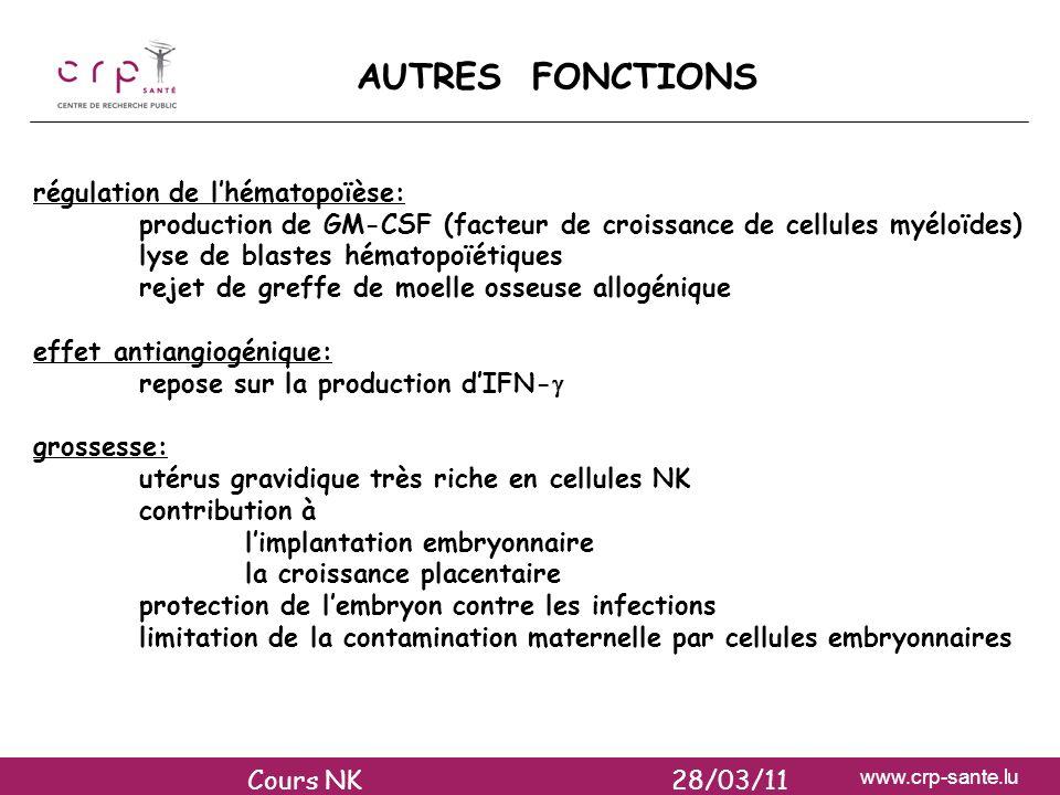 www.crp-sante.lu AUTRES FONCTIONS régulation de lhématopoïèse: production de GM-CSF (facteur de croissance de cellules myéloïdes) lyse de blastes héma