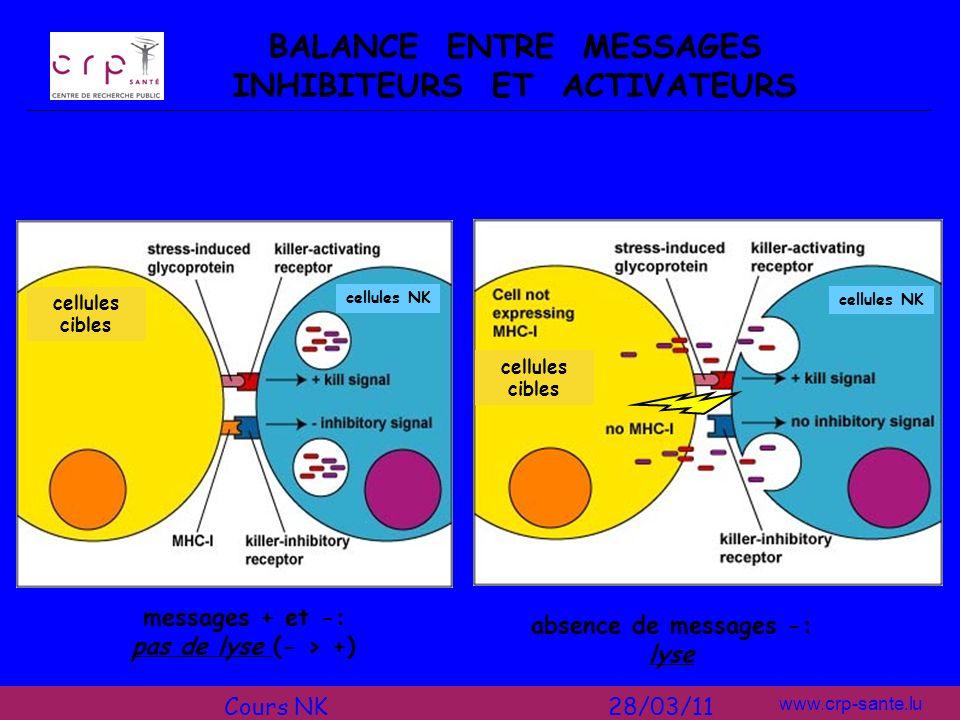 www.crp-sante.lu BALANCE ENTRE MESSAGES INHIBITEURS ET ACTIVATEURS absence de messages -: lyse messages + et -: pas de lyse (- > +) cellules cibles ce