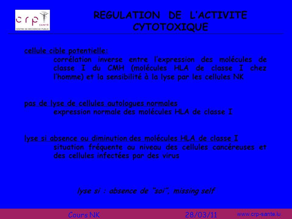 www.crp-sante.lu REGULATION DE LACTIVITE CYTOTOXIQUE cellule cible potentielle: corrélation inverse entre lexpression des molécules de classe I du CMH