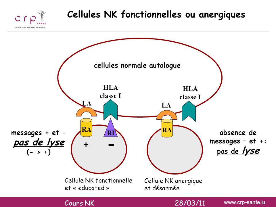 www.crp-sante.lu RA RI RA + - messages + et - pas de lyse (- > +) absence de messages – et +: pas de lyse HLA classe I LA Cellules NK fonctionnelles o
