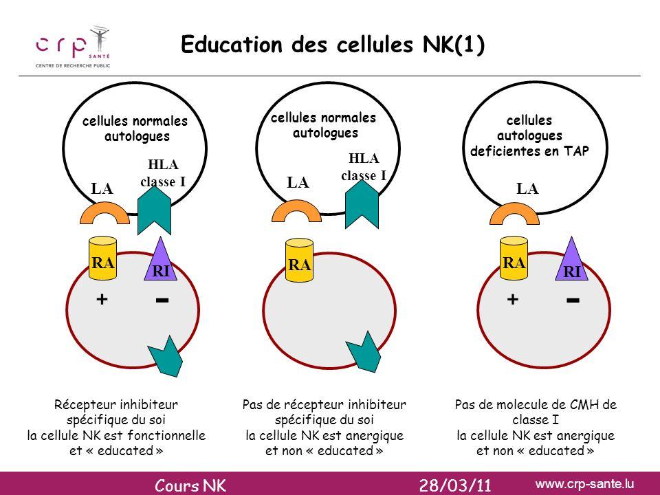 www.crp-sante.lu Education des cellules NK(1) RI RA + - HLA classe I LA cellules normales autologues cellules normales autologues cellules autologues