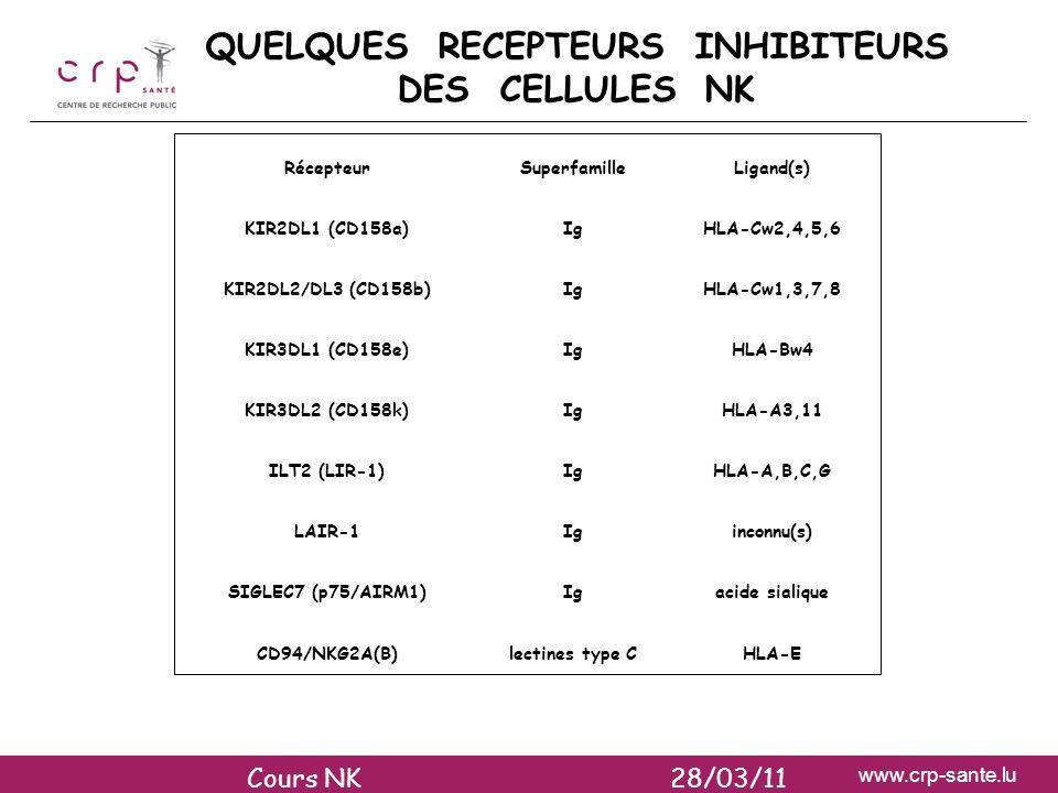 www.crp-sante.lu QUELQUES RECEPTEURS INHIBITEURS DES CELLULES NK RécepteurSuperfamilleLigand(s) KIR2DL1 (CD158a)IgHLA-Cw2,4,5,6 KIR2DL2/DL3 (CD158b)Ig