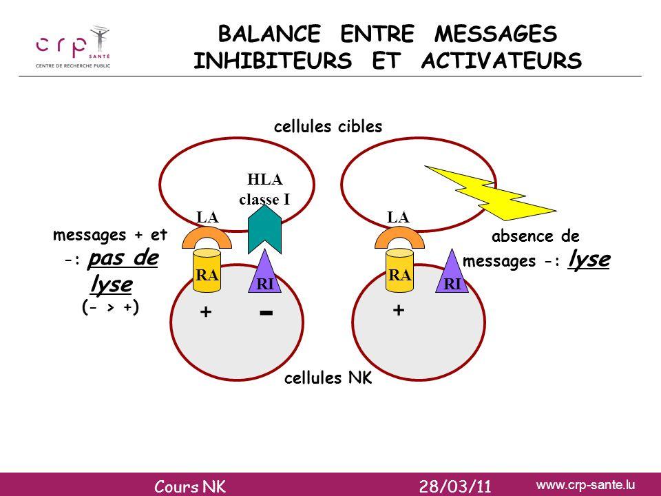 www.crp-sante.lu RI RA cellules cibles cellules NK + + - messages + et -: pas de lyse (- > +) absence de messages -: lyse RI HLA classe I LA BALANCE E