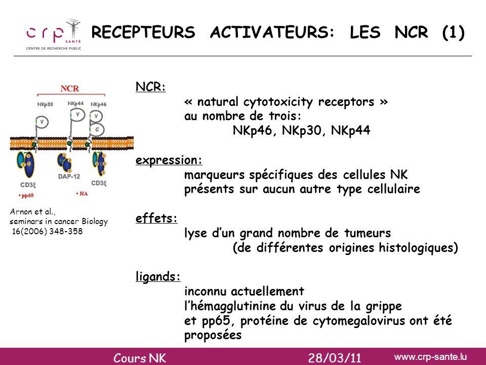 www.crp-sante.lu RECEPTEURS ACTIVATEURS: LES NCR (1) NCR: « natural cytotoxicity receptors » au nombre de trois: NKp46, NKp30, NKp44 expression: marqu