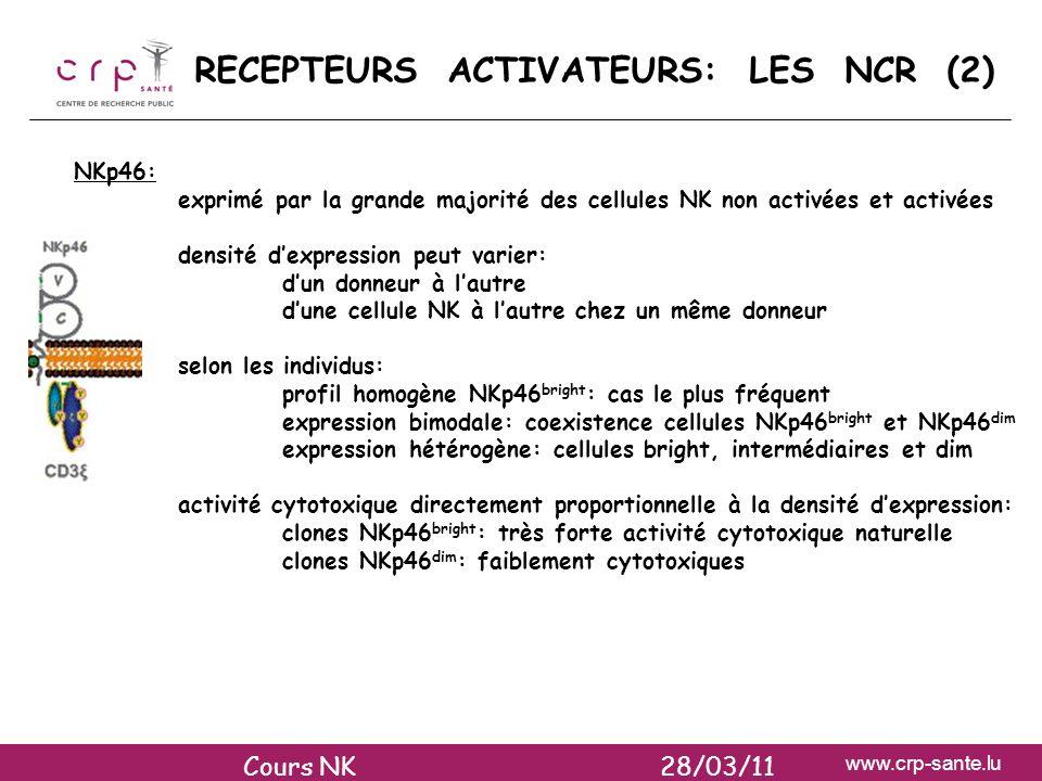 www.crp-sante.lu RECEPTEURS ACTIVATEURS: LES NCR (2) NKp46: exprimé par la grande majorité des cellules NK non activées et activées densité dexpressio