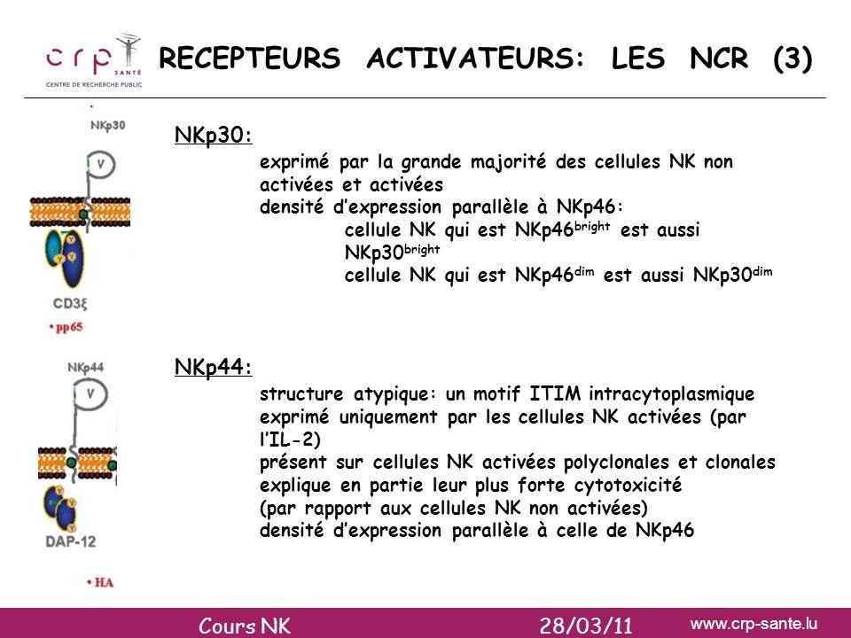 www.crp-sante.lu RECEPTEURS ACTIVATEURS: LES NCR (3) NKp30: exprimé par la grande majorité des cellules NK non activées et activées densité dexpressio