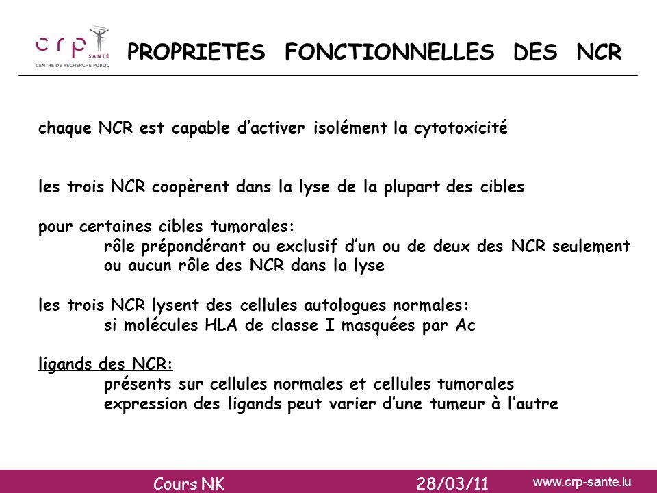 www.crp-sante.lu PROPRIETES FONCTIONNELLES DES NCR chaque NCR est capable dactiver isolément la cytotoxicité les trois NCR coopèrent dans la lyse de l