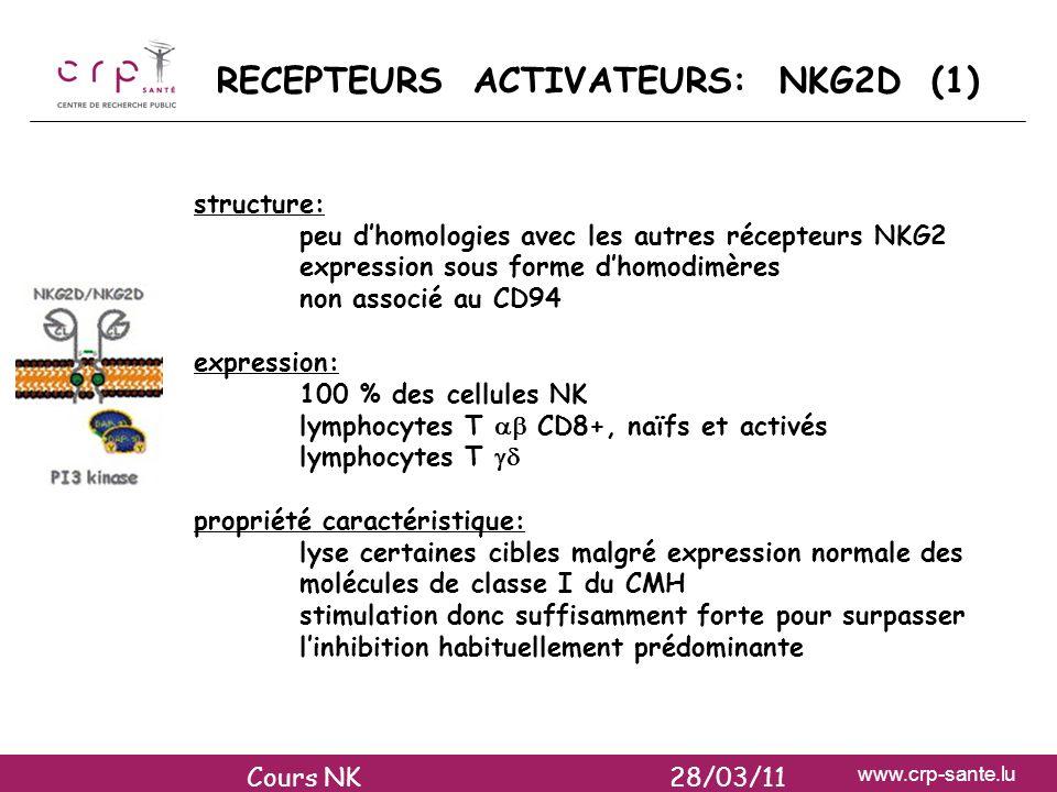 www.crp-sante.lu RECEPTEURS ACTIVATEURS: NKG2D (1) structure: peu dhomologies avec les autres récepteurs NKG2 expression sous forme dhomodimères non a
