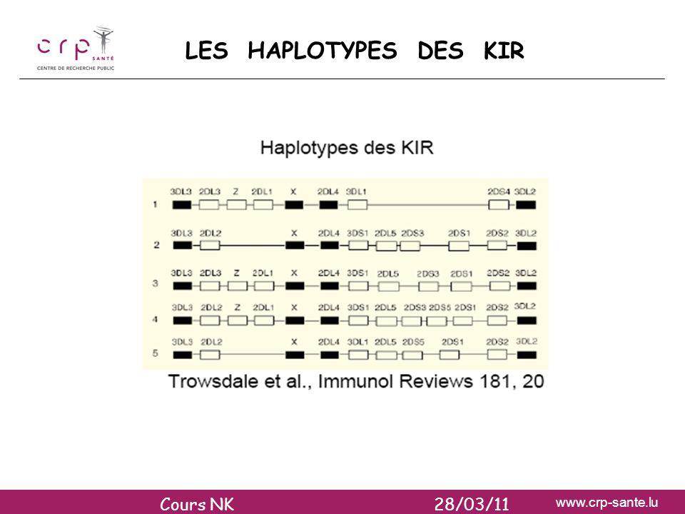 www.crp-sante.lu LES HAPLOTYPES DES KIR Cours NK 28/03/11