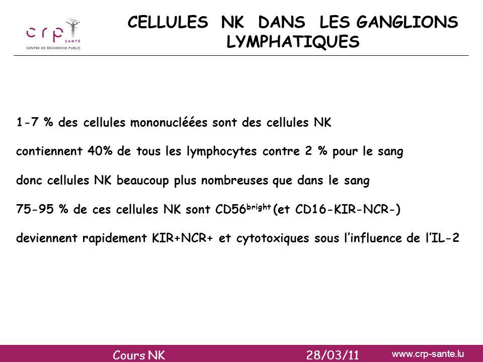 www.crp-sante.lu CELLULES NK DANS LES GANGLIONS LYMPHATIQUES 1-7 % des cellules mononucléées sont des cellules NK contiennent 40% de tous les lymphocy