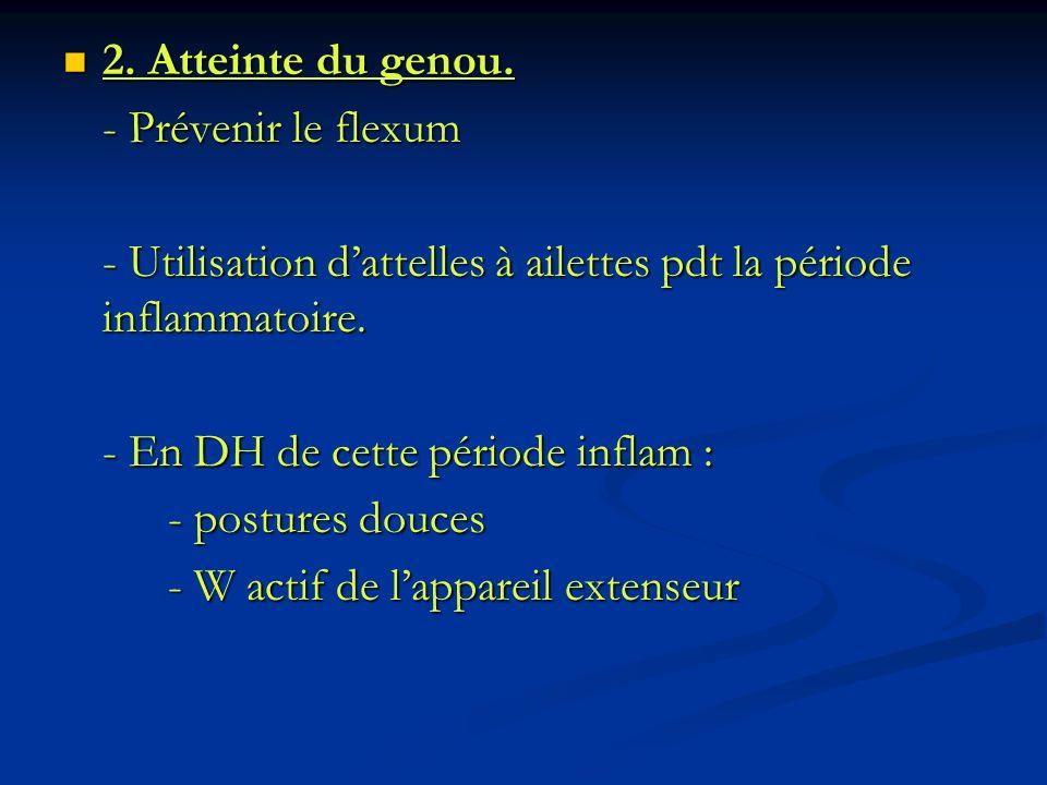 2. Atteinte du genou. 2. Atteinte du genou. - Prévenir le flexum - Utilisation dattelles à ailettes pdt la période inflammatoire. - En DH de cette pér