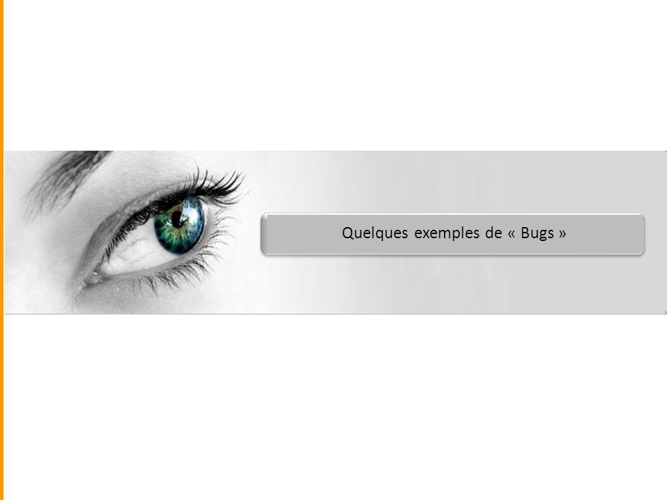 Quelques exemples de « Bugs »