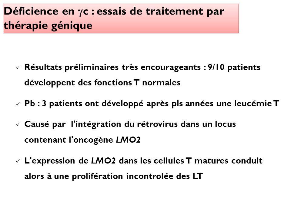 Résultats préliminaires très encourageants : 9/10 patients développent des fonctions T normales Pb : 3 patients ont développé après pls années une leu
