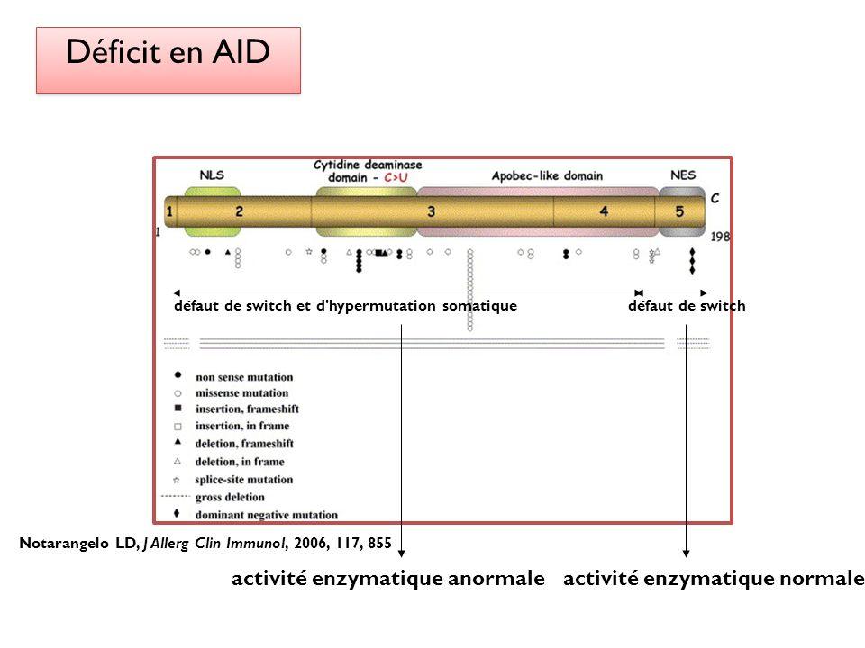 Déficit en AID défaut de switch et d'hypermutation somatiquedéfaut de switch activité enzymatique anormaleactivité enzymatique normale Notarangelo LD,