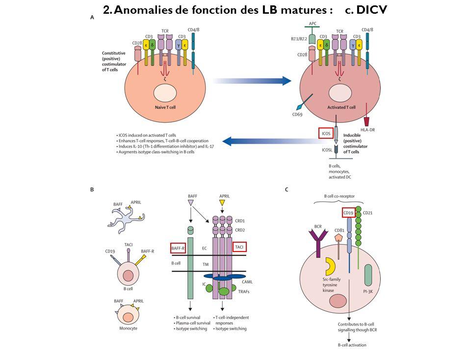 c. DICV 2. Anomalies de fonction des LB matures :