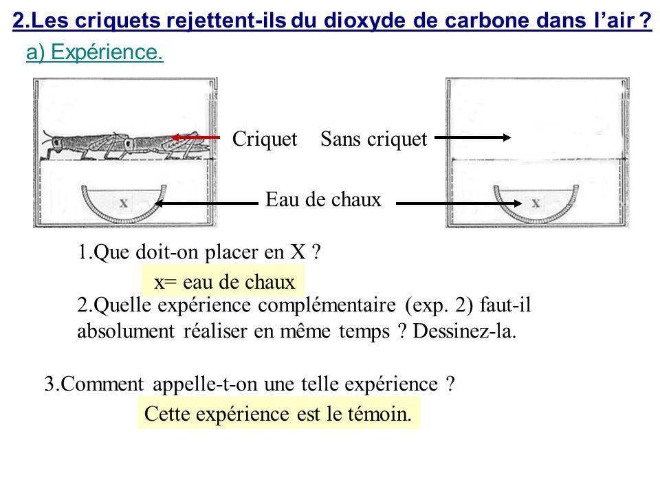 2.Les criquets rejettent-ils du dioxyde de carbone dans lair ? a)Expérience. Criquet Eau de chaux Sans criquet x= eau de chaux 1.Que doit-on placer en